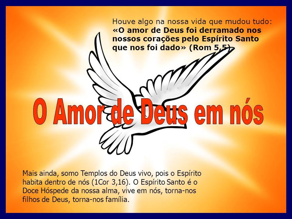 Houve algo na nossa vida que mudou tudo: «O amor de Deus foi derramado nos nossos corações pelo Espírito Santo que nos foi dado» (Rom 5,5). Mais ainda