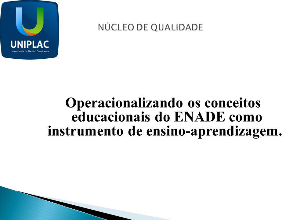 Operacionalizando os conceitos educacionais do ENADE como instrumento de ensino-aprendizagem.