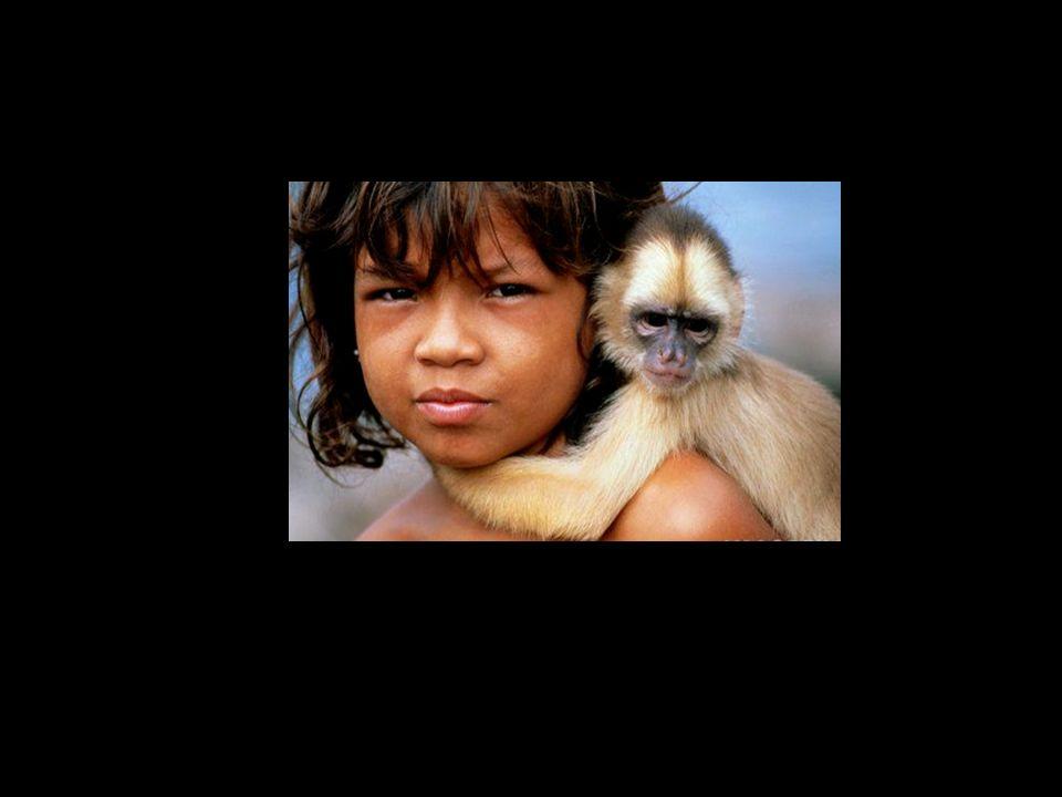 Pequeno índio da etnia Xucuru, Sertão pernambucano