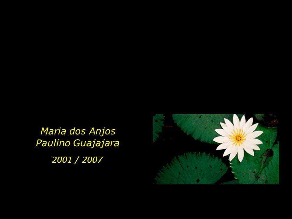 holdemqueen@hotmail.com Maria dos Anjos Paulino Guajajara 2001 / 2007