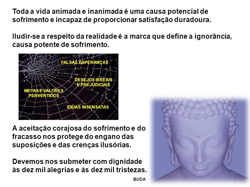 FALSAS ESPERANÇAS DESEJOS IRREAIS E PREJUDICIAIS METAS E VALORES PERVERTIDOS IDÉIAS INSENSATAS