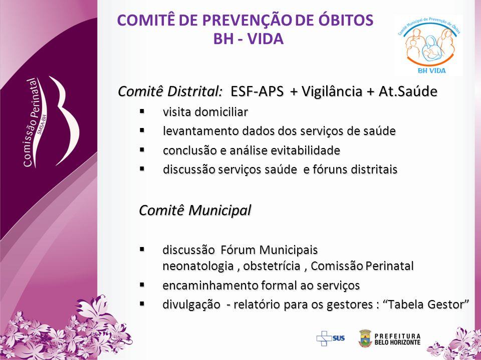COMITÊ DE PREVENÇÃO DE ÓBITOS BH - VIDA Comitê Distrital: ESF-APS + Vigilância + At.Saúde visita domiciliar visita domiciliar levantamento dados dos s
