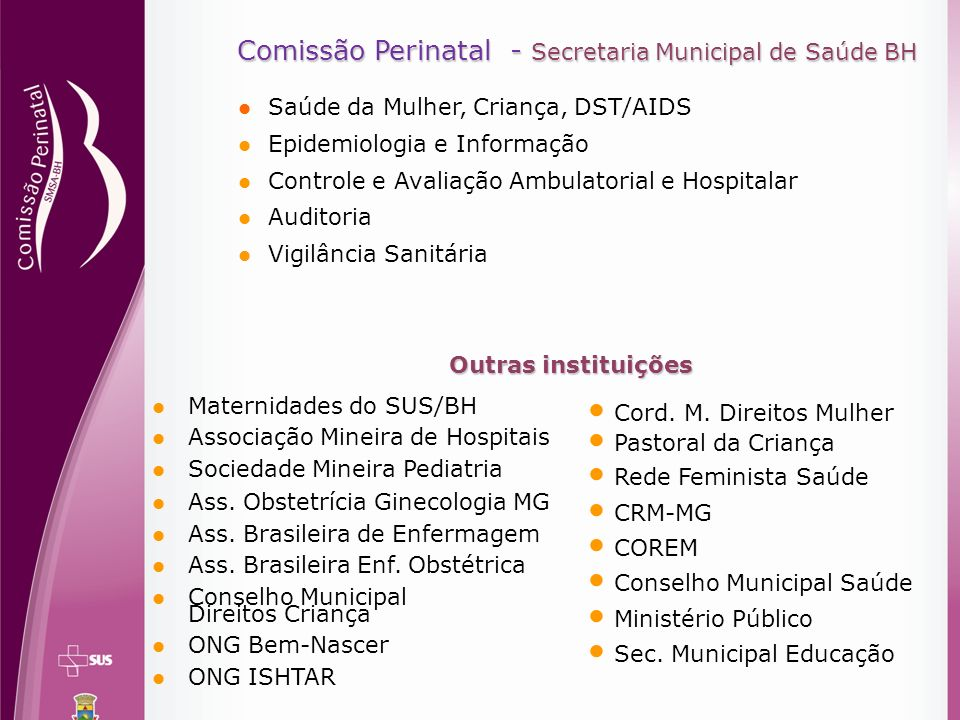 Comissão Perinatal - Secretaria Municipal de Saúde BH Comissão Perinatal - Secretaria Municipal de Saúde BH Saúde da Mulher, Criança, DST/AIDS Epidemi