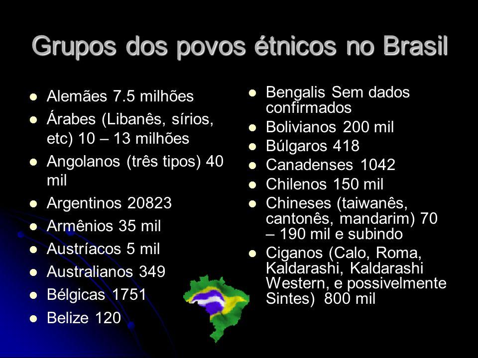 Grupos dos povos étnicos no Brasil Alemães 7.5 milhões Árabes (Libanês, sírios, etc) 10 – 13 milhões Angolanos (três tipos) 40 mil Argentinos 20823 Ar