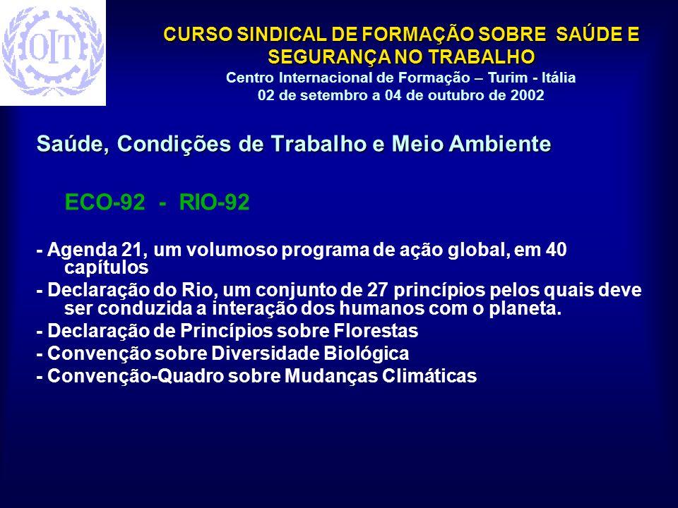 CURSO SINDICAL DE FORMAÇÃO SOBRE SAÚDE E SEGURANÇA NO TRABALHO Centro Internacional de Formação – Turim - Itália 02 de setembro a 04 de outubro de 2002 Saúde, Condições de Trabalho e Meio Ambiente ECO-92 - RIO-92 - Agenda 21, um volumoso programa de ação global, em 40 capítulos - Declaração do Rio, um conjunto de 27 princípios pelos quais deve ser conduzida a interação dos humanos com o planeta.