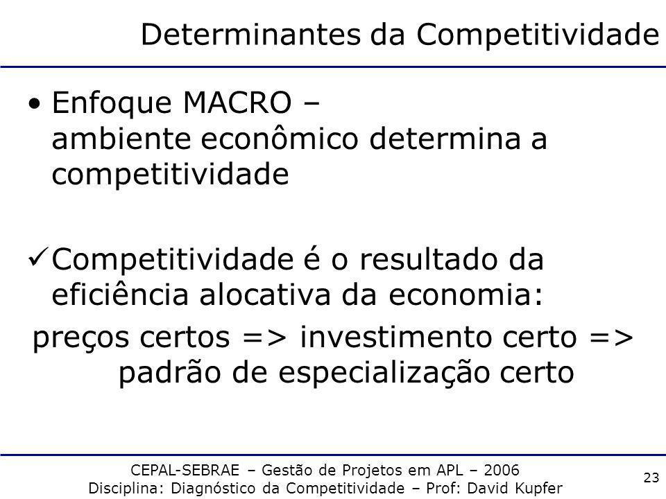 CEPAL-SEBRAE – Gestão de Projetos em APL – 2006 Disciplina: Diagnóstico da Competitividade – Prof: David Kupfer 22 Determinantes da Competitividade En
