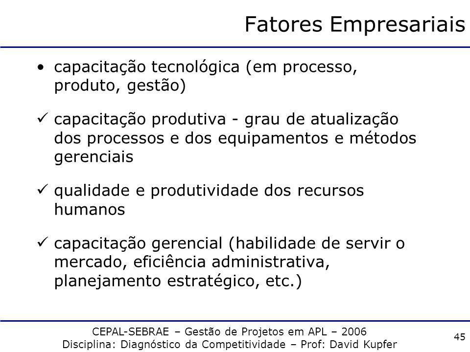 CEPAL-SEBRAE – Gestão de Projetos em APL – 2006 Disciplina: Diagnóstico da Competitividade – Prof: David Kupfer 44 Fatores Empresariais são internos à