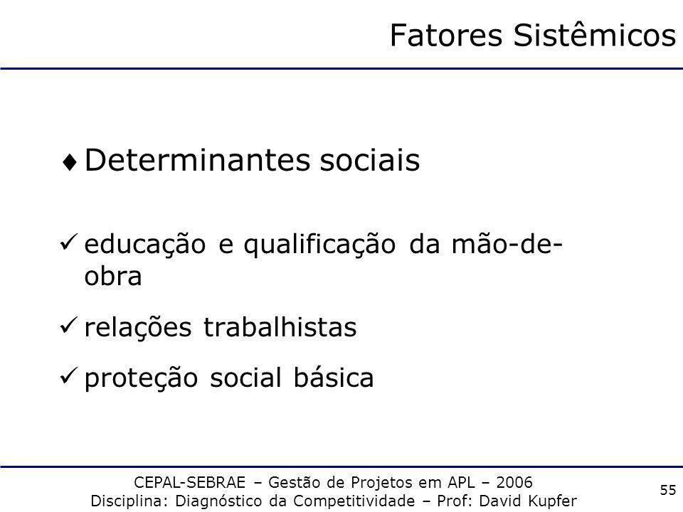 CEPAL-SEBRAE – Gestão de Projetos em APL – 2006 Disciplina: Diagnóstico da Competitividade – Prof: David Kupfer 54 Fatores Sistêmicos Determinantes in