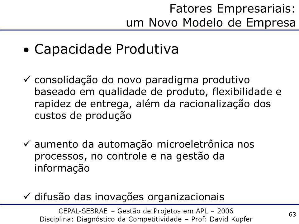 CEPAL-SEBRAE – Gestão de Projetos em APL – 2006 Disciplina: Diagnóstico da Competitividade – Prof: David Kupfer 62 Fatores Empresariais: um Novo Model