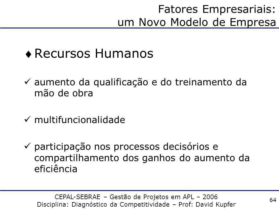 CEPAL-SEBRAE – Gestão de Projetos em APL – 2006 Disciplina: Diagnóstico da Competitividade – Prof: David Kupfer 63 Fatores Empresariais: um Novo Model