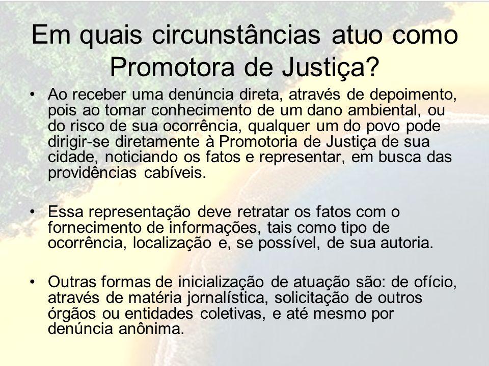 Em quais circunstâncias atuo como Promotora de Justiça? Ao receber uma denúncia direta, através de depoimento, pois ao tomar conhecimento de um dano a
