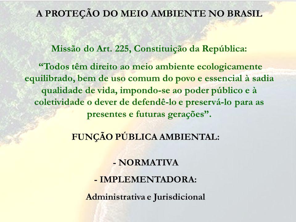 FUNÇÃO PÚBLICA AMBIENTAL: A PROTEÇÃO DO MEIO AMBIENTE NO BRASIL Missão do Art. 225, Constituição da República: Todos têm direito ao meio ambiente ecol