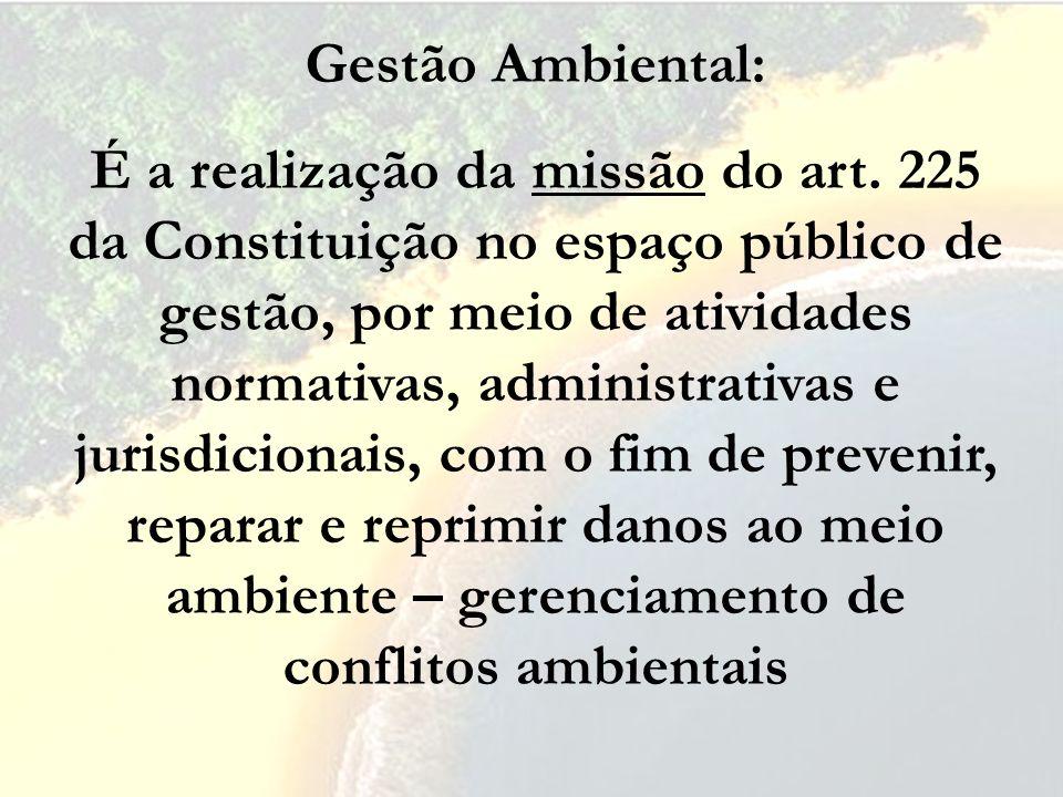 Gestão Ambiental: É a realização da missão do art. 225 da Constituição no espaço público de gestão, por meio de atividades normativas, administrativas