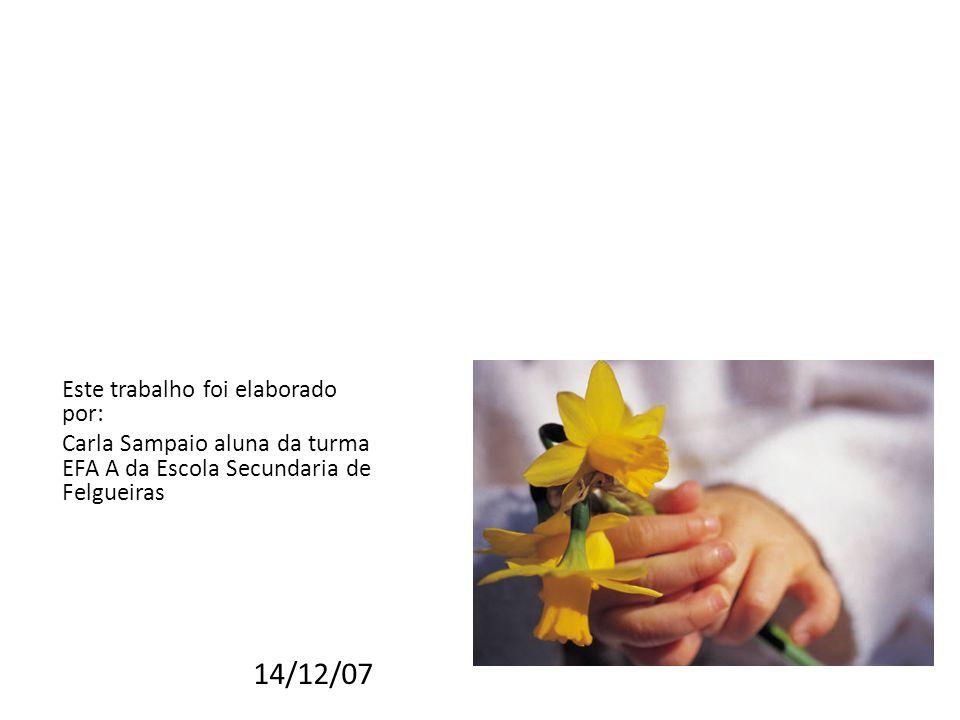 Este trabalho foi elaborado por: Carla Sampaio aluna da turma EFA A da Escola Secundaria de Felgueiras 14/12/07