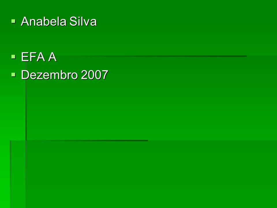 Anabela Silva Anabela Silva EFA A EFA A Dezembro 2007 Dezembro 2007