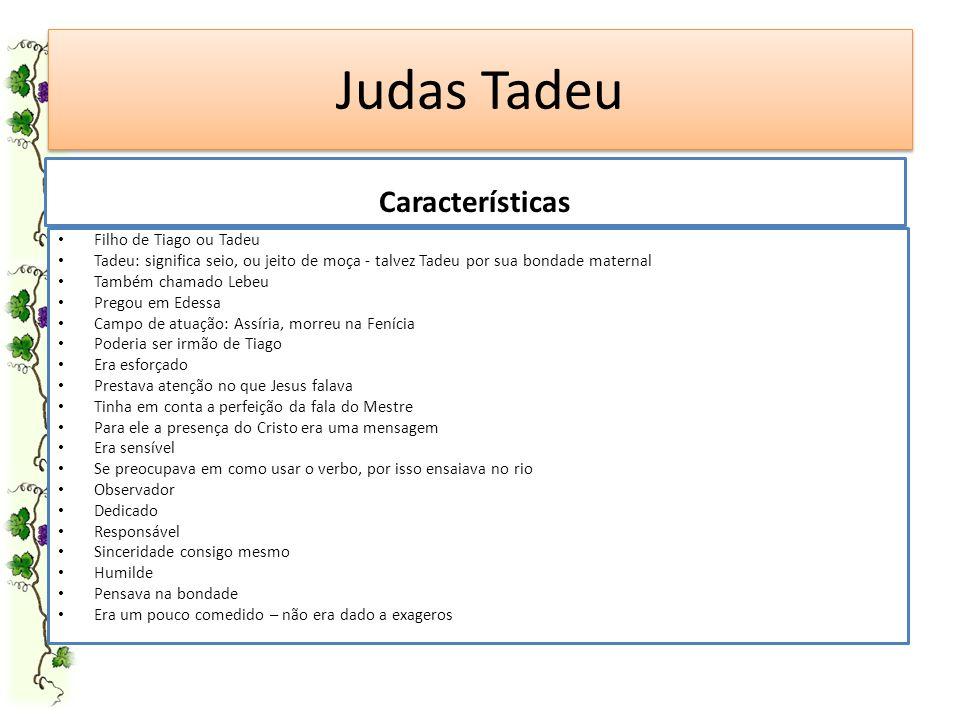 Judas Tadeu Filho de Tiago ou Tadeu Tadeu: significa seio, ou jeito de moça - talvez Tadeu por sua bondade maternal Também chamado Lebeu Pregou em Ede