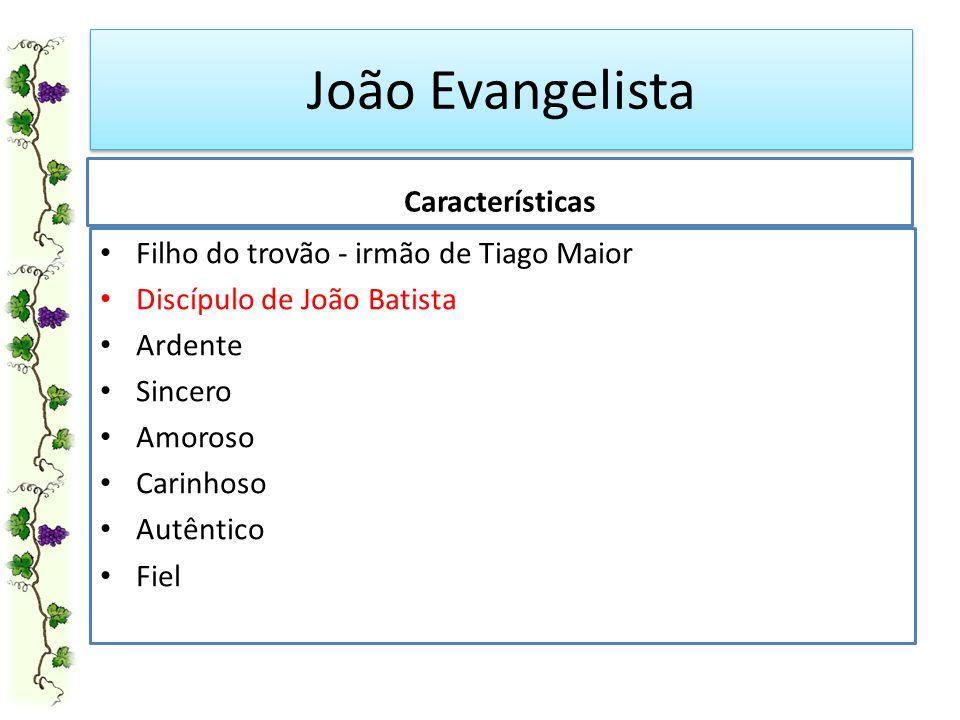 João Evangelista Filho do trovão - irmão de Tiago Maior Discípulo de João Batista Ardente Sincero Amoroso Carinhoso Autêntico Fiel Características