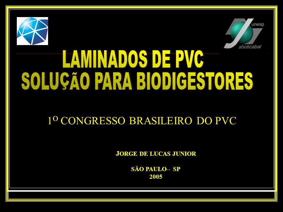 J ORGE DE LUCAS JUNIOR SÃO PAULO-- SP 2005 1 O CONGRESSO BRASILEIRO DO PVC