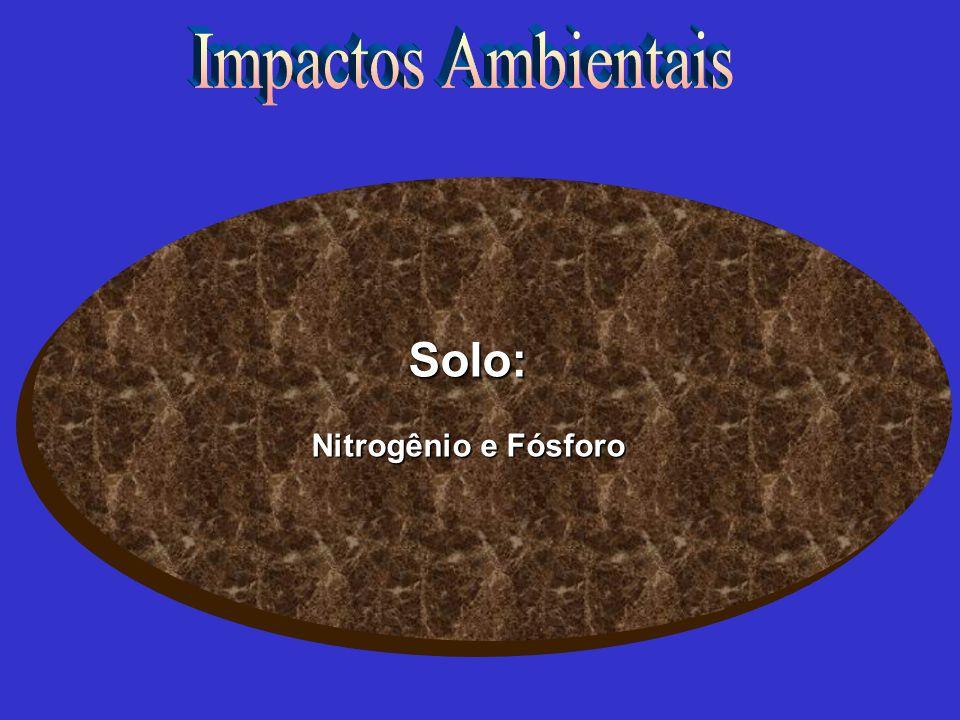 Solo: Nitrogênio e Fósforo