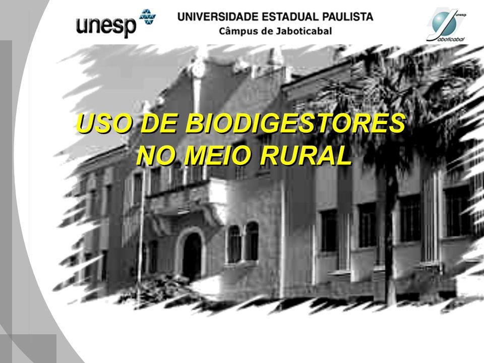 USO DE BIODIGESTORES NO MEIO RURAL USO DE BIODIGESTORES NO MEIO RURAL