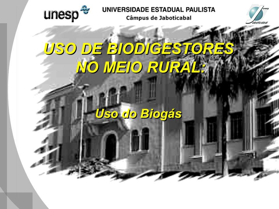 USO DE BIODIGESTORES NO MEIO RURAL: Uso do Biogás USO DE BIODIGESTORES NO MEIO RURAL: Uso do Biogás