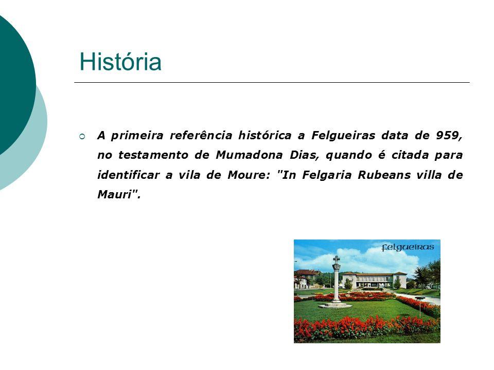 A cidade de Felgueiras situa-se no distrito do Porto, tem cerca de 15.525 habitantes. A cidade de Felgueiras