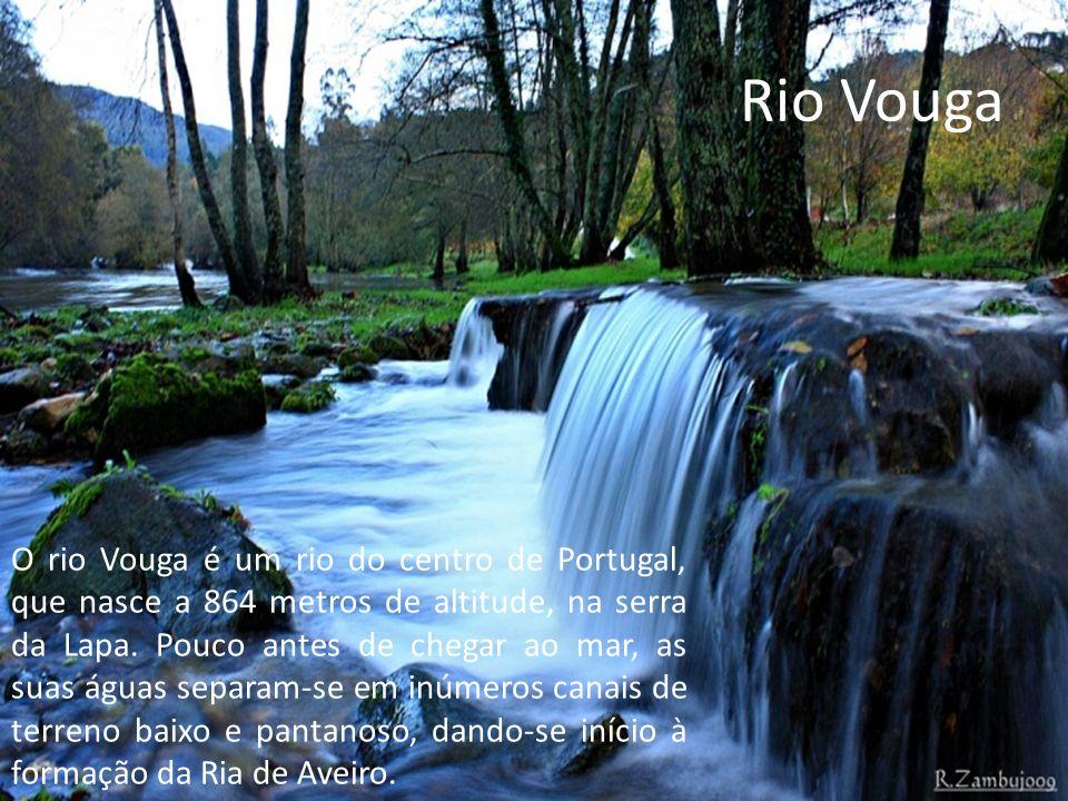 Rio Vouga O rio Vouga é um rio do centro de Portugal, que nasce a 864 metros de altitude, na serra da Lapa.