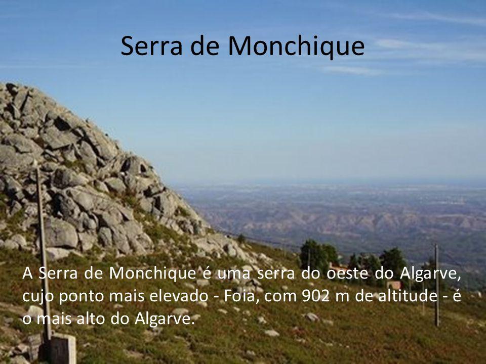 Serra de Monchique A Serra de Monchique é uma serra do oeste do Algarve, cujo ponto mais elevado - Foia, com 902 m de altitude - é o mais alto do Algarve.
