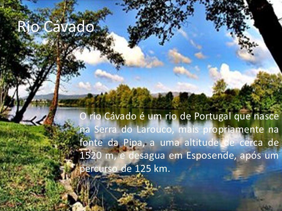 Serra de Mogadouro A Serra de Mogadouro é uma elevação de Portugal Continental, com 993 metros de altitude.