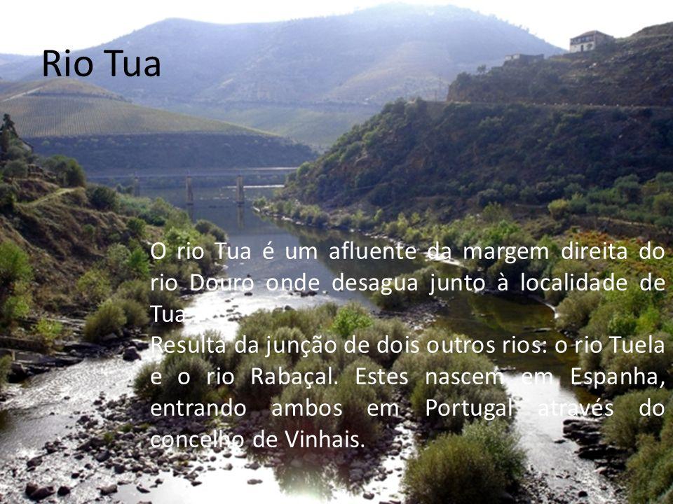Rio Sado O Sado é um rio português, que nasce a 230m de altitude, na Serra da Vigia e percorre 180 quilómetros até desaguar no oceano Atlântico perto de Setúbal, sendo o seu estuário a separar Setúbal, na margem norte, de Tróia a sul.