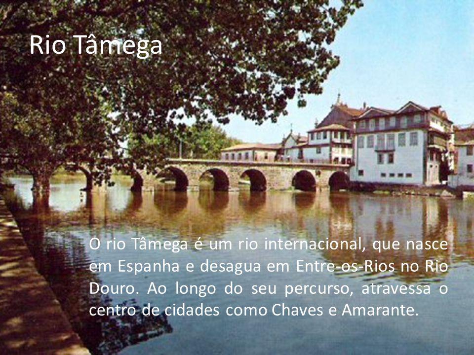 Rio Tâmega O rio Tâmega é um rio internacional, que nasce em Espanha e desagua em Entre-os-Rios no Rio Douro.