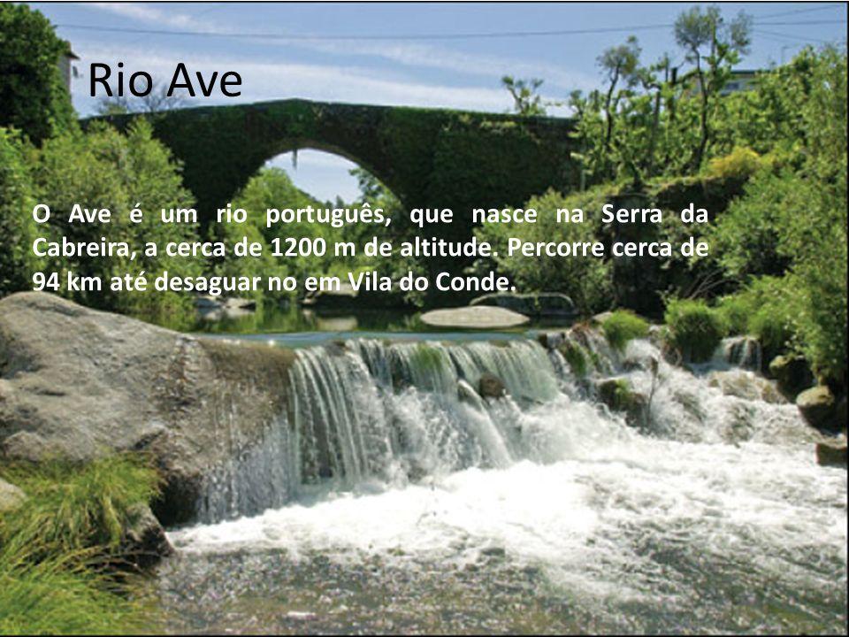 Rio Guadiana O rio Guadiana é um rio internacional da Península Ibérica que nasce a uma altitude de cerca de 1700m, nas lagoas de Ruidera, e entre a cidade portuguesa de Vila Real de Santo António e a espanhola de Ayamonte.