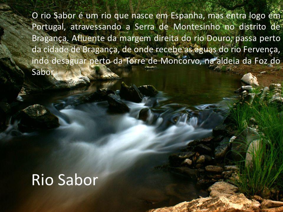Rio Sabor O rio Sabor é um rio que nasce em Espanha, mas entra logo em Portugal, atravessando a Serra de Montesinho no distrito de Bragança.