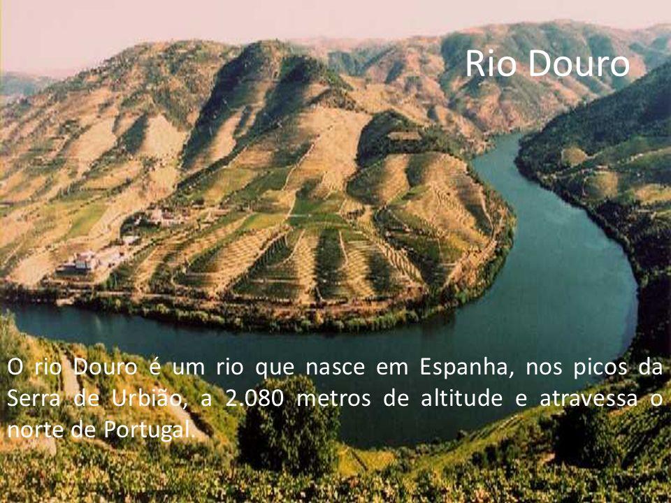 Rio Douro A foz do Douro é junto às cidades do Porto e Vila Nova de Gaia.
