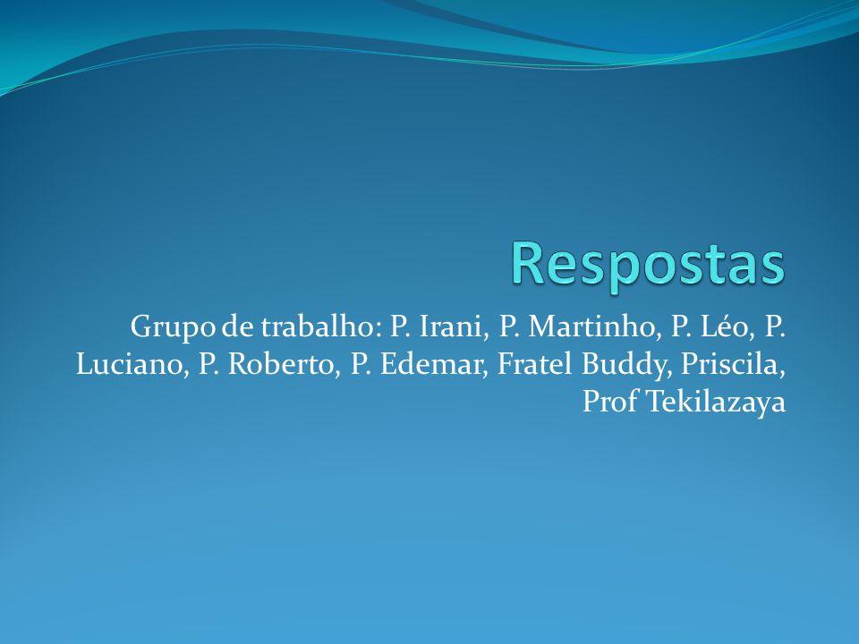 Grupo de trabalho: P. Irani, P. Martinho, P. Léo, P.