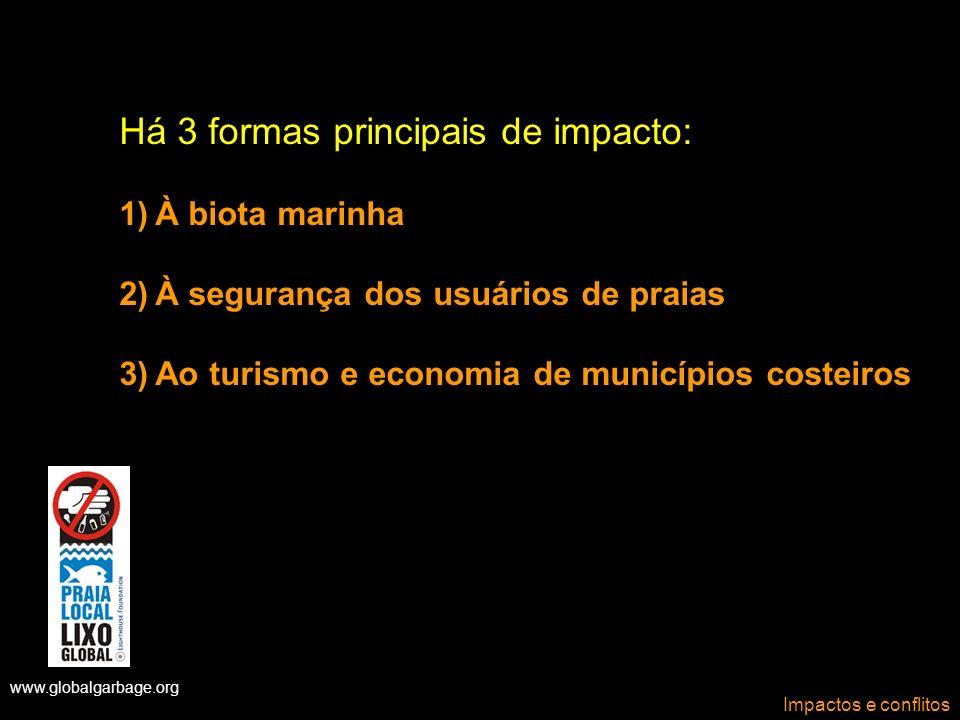 www.globalgarbage.org Impactos e conflitos Há 3 formas principais de impacto: 1)À biota marinha 2)À segurança dos usuários de praias 3)Ao turismo e ec
