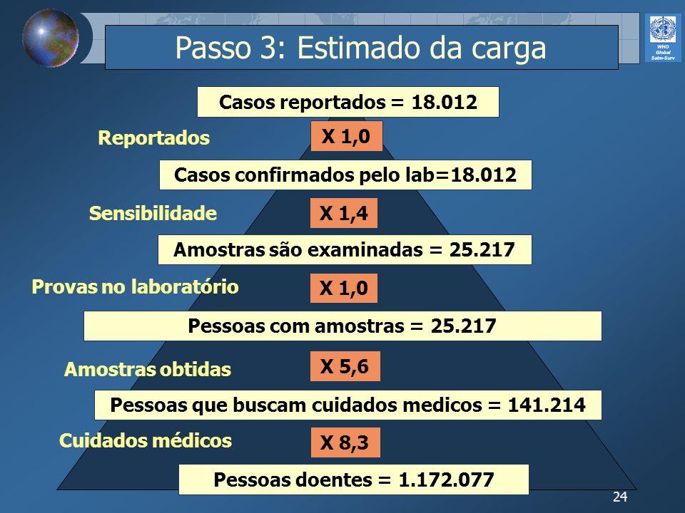 24 Pessoas doentes = 1.172.077 Pessoas que buscam cuidados medicos = 141.214 Pessoas com amostras = 25.217 Amostras são examinadas = 25.217 Casos conf