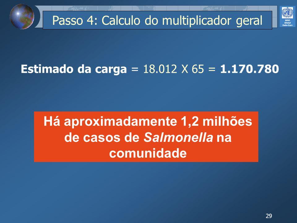 29 Estimado da carga = 18.012 X 65 = 1.170.780 Há aproximadamente 1,2 milhões de casos de Salmonella na comunidade Passo 4: Calculo do multiplicador g