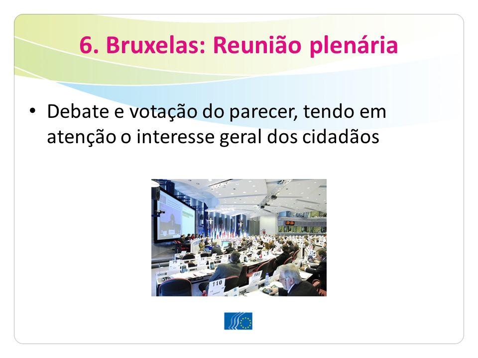 6. Bruxelas: Reunião plenária Debate e votação do parecer, tendo em atenção o interesse geral dos cidadãos