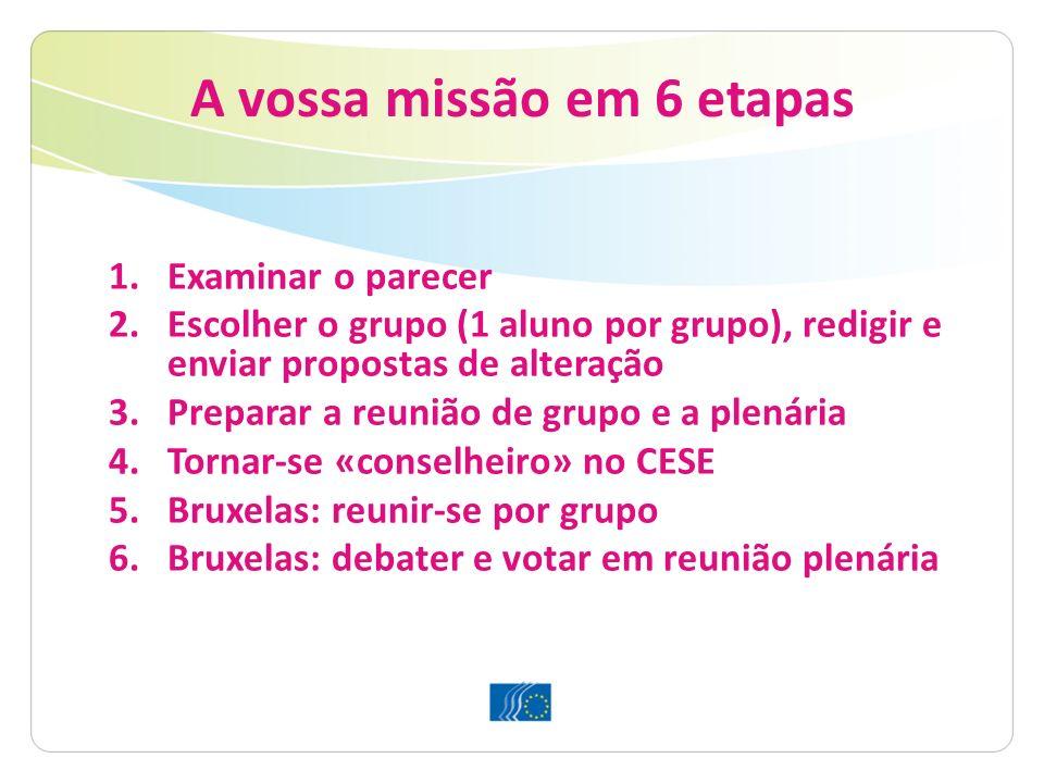 A vossa missão em 6 etapas 1.Examinar o parecer 2.Escolher o grupo (1 aluno por grupo), redigir e enviar propostas de alteração 3.Preparar a reunião d