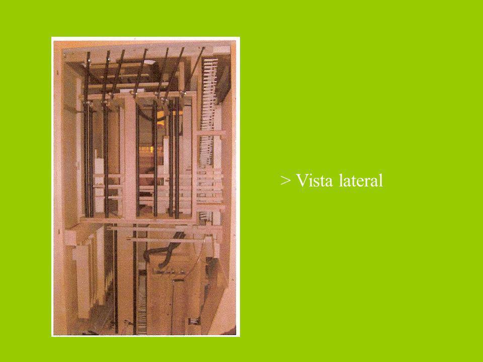 > Vista lateral
