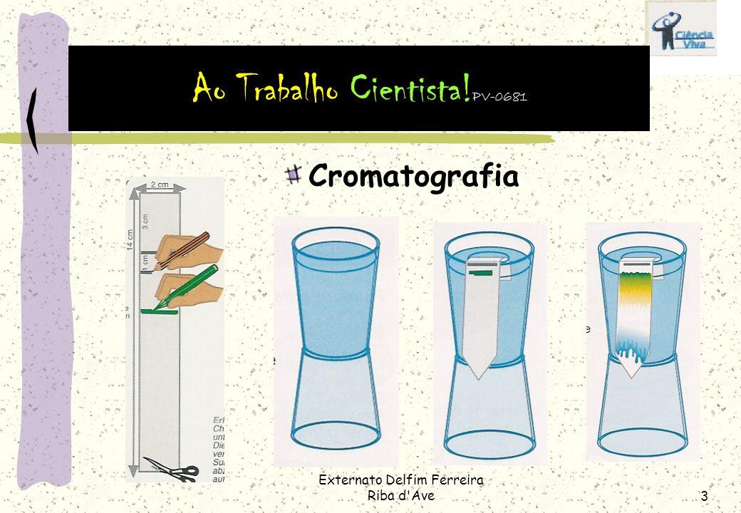Externato Delfim Ferreira Riba d'Ave2 Cromatografia Explicação A cromatografia é um método que permite separar substâncias coloridas. Utiliza-se em la