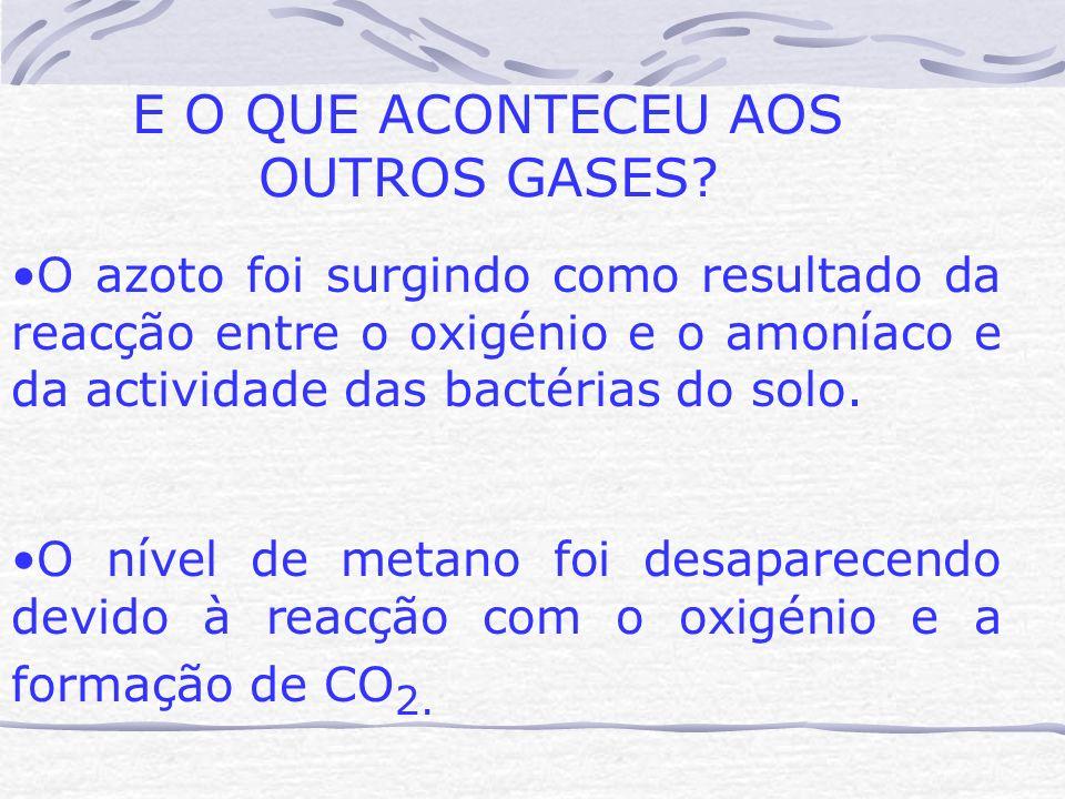 E O QUE ACONTECEU AOS OUTROS GASES? O azoto foi surgindo como resultado da reacção entre o oxigénio e o amoníaco e da actividade das bactérias do solo