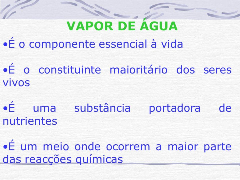 VAPOR DE ÁGUA É o componente essencial à vida É o constituinte maioritário dos seres vivos É uma substância portadora de nutrientes É um meio onde oco