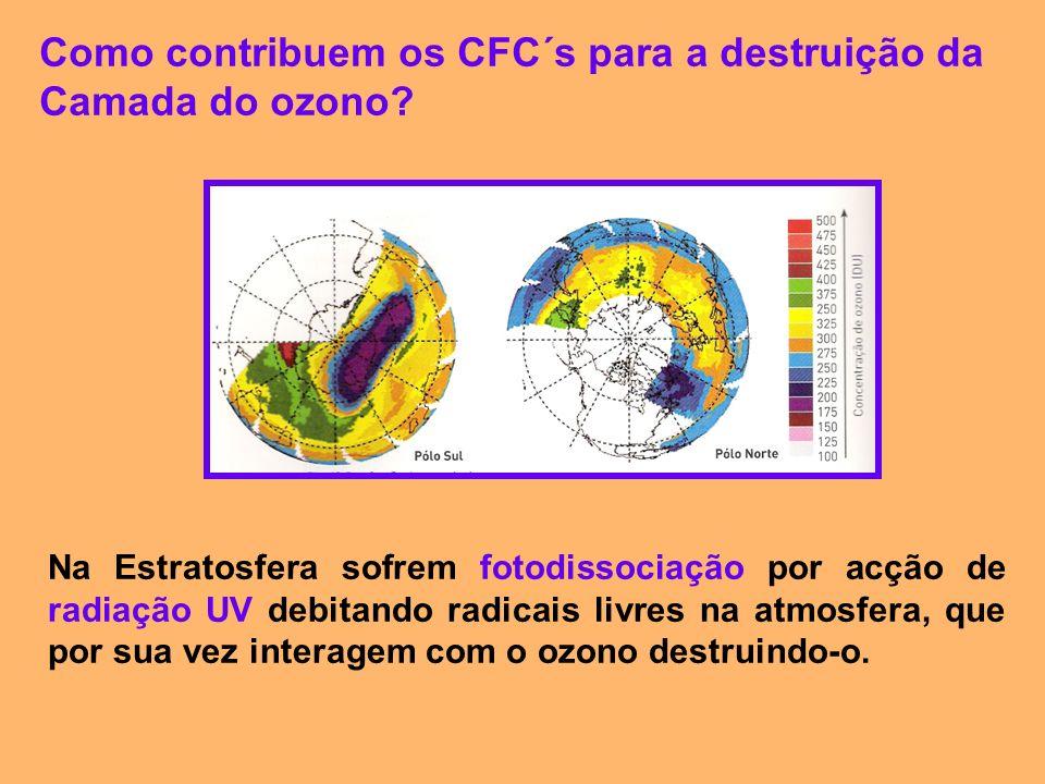 Como contribuem os CFC´s para a destruição da Camada do ozono? Na Estratosfera sofrem fotodissociação por acção de radiação UV debitando radicais livr