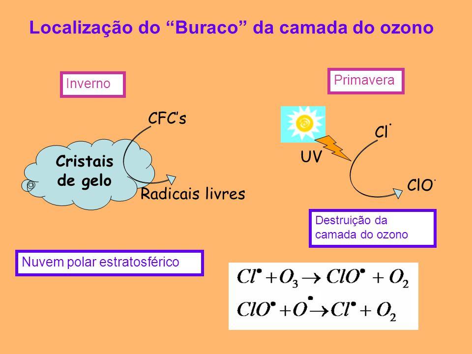 Localização do Buraco da camada do ozono Cristais de gelo CFCs Radicais livres Nuvem polar estratosférico Inverno Primavera Cl. ClO. UV Destruição da