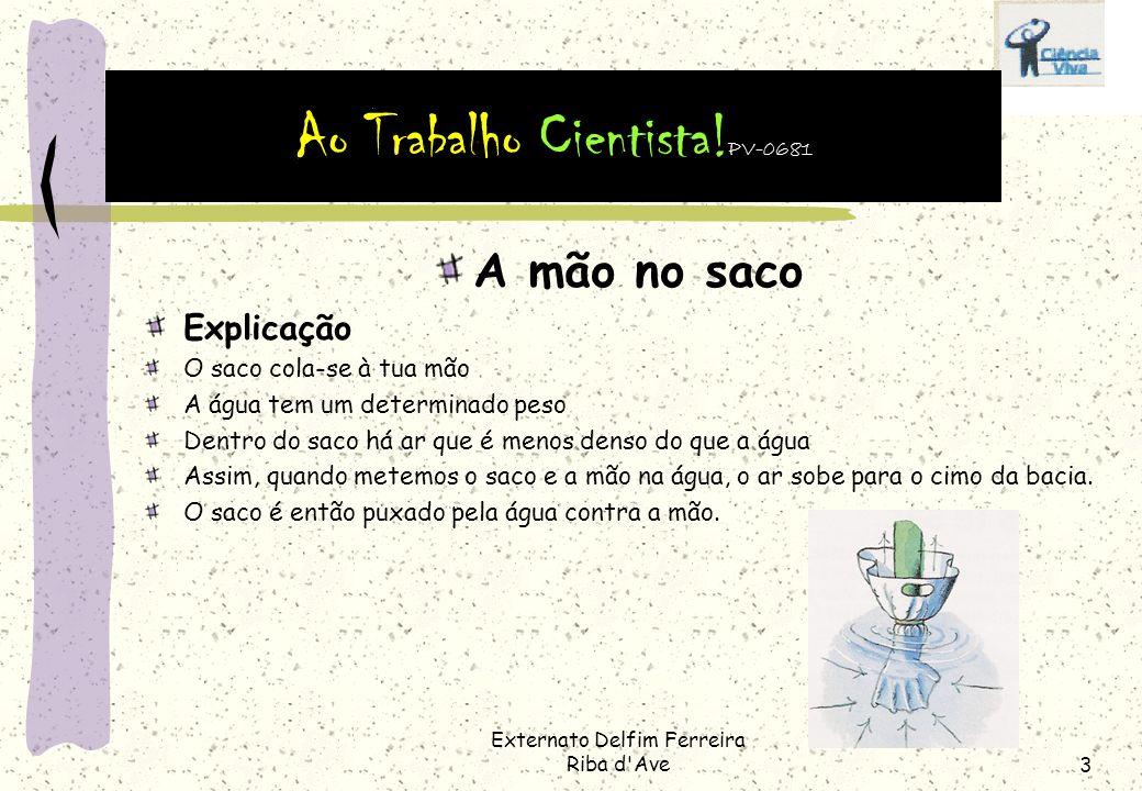 Externato Delfim Ferreira Riba d Ave2 A mão no saco Procedimento Enche o balde com água Mete a mão no saco.