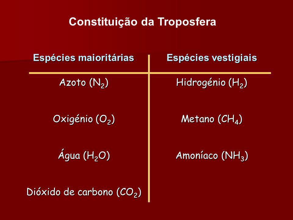 Constituição da Troposfera Espécies maioritárias Espécies vestigiais Azoto (N 2 ) Hidrogénio (H 2 ) Oxigénio (O 2 ) Metano (CH 4 ) Água (H 2 O) Amonía