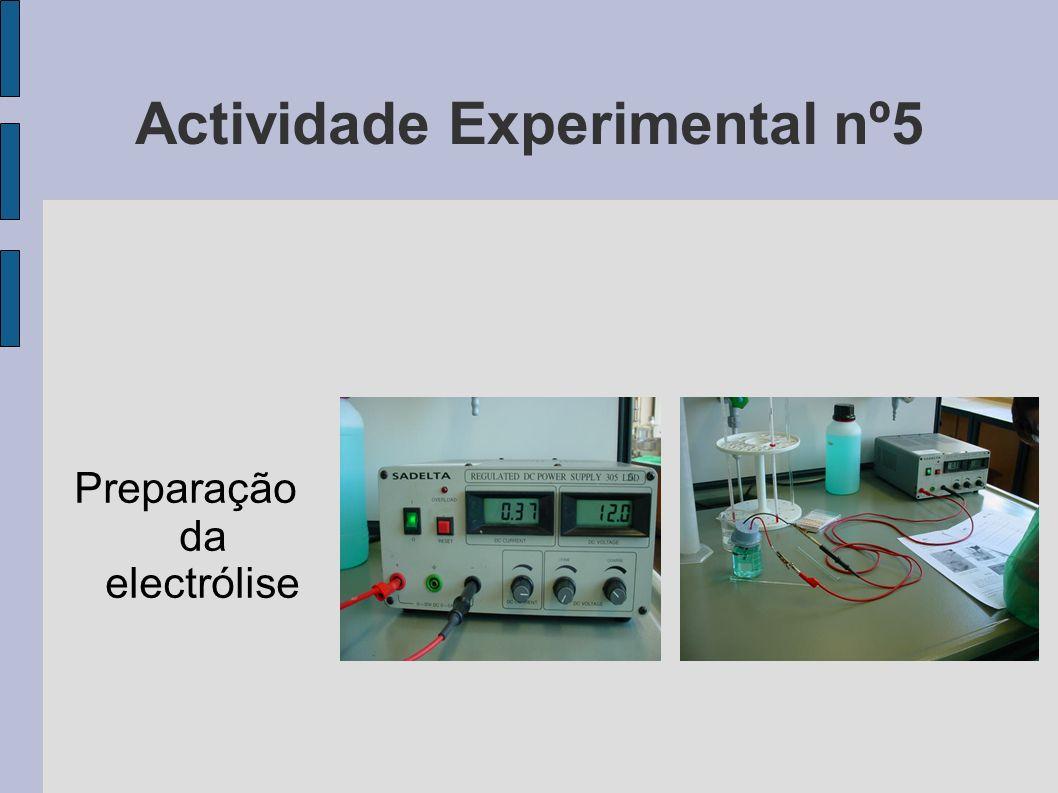 Actividade Experimental nº5 Preparação da electrólise