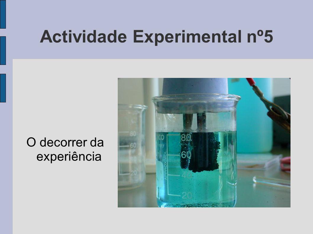 Actividade Experimental nº5 O decorrer da experiência